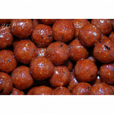 LK Baits Euro Economic Boilies Chilli Squid  5kg, 20 mm