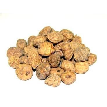 Mikbaits - Tygří ořech Jumbo 1kg